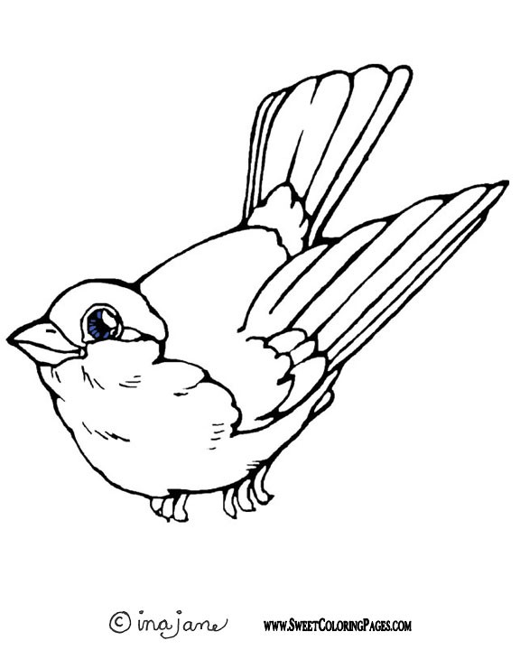 576x720 Spring Birds Coloring Pages Coloring Page