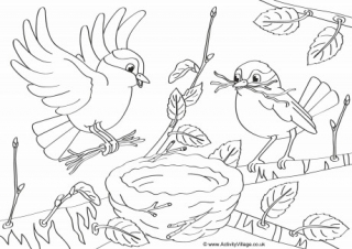 320x226 Spring Birds Colouring Page