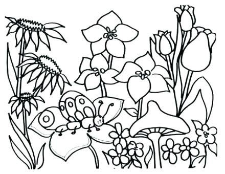 440x340 Free Kids Coloring Pages Spring Break Coloring Sheets Spring