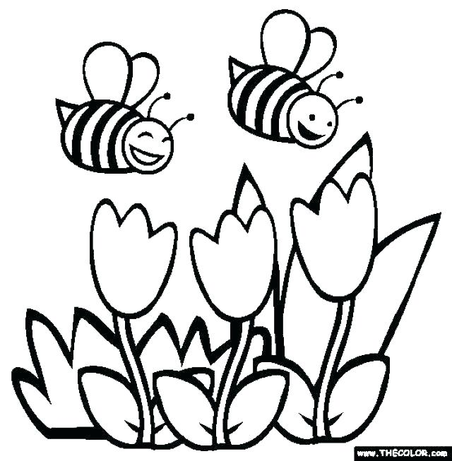 640x653 Spring Break Coloring Pages Spring Break Coloring Pages Spring