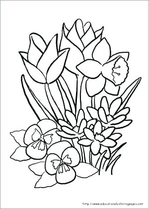 300x420 Spring Coloring Pages Free Free Spring Coloring Pages Big Spring
