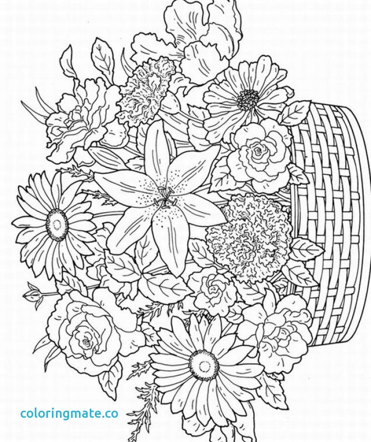 736x875 Spring Coloring Pages For Adults