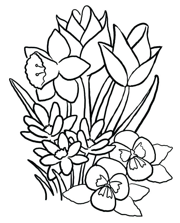 618x763 Coloring Pages For Spring Color Pages For Preschoolers Spring