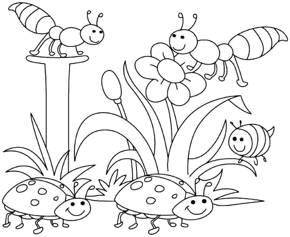 1216x997 Fascinating Printable Spring Coloring Pages Kindergarten Many