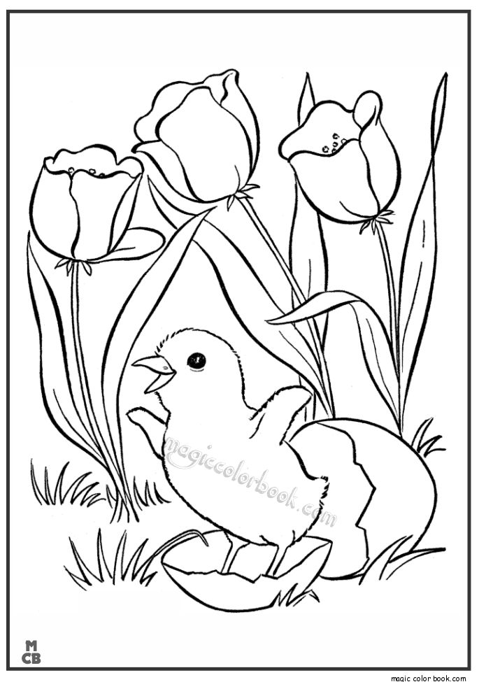 685x975 Best Spring Coloring Pages Freeline Images