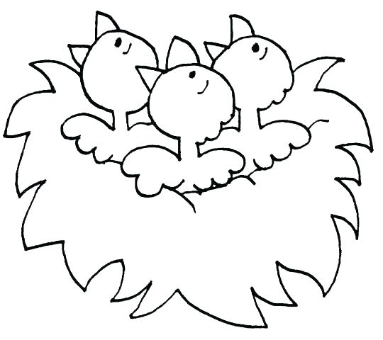 540x480 Spring Coloring Pages For Preschoolers Preschool Spring Coloring