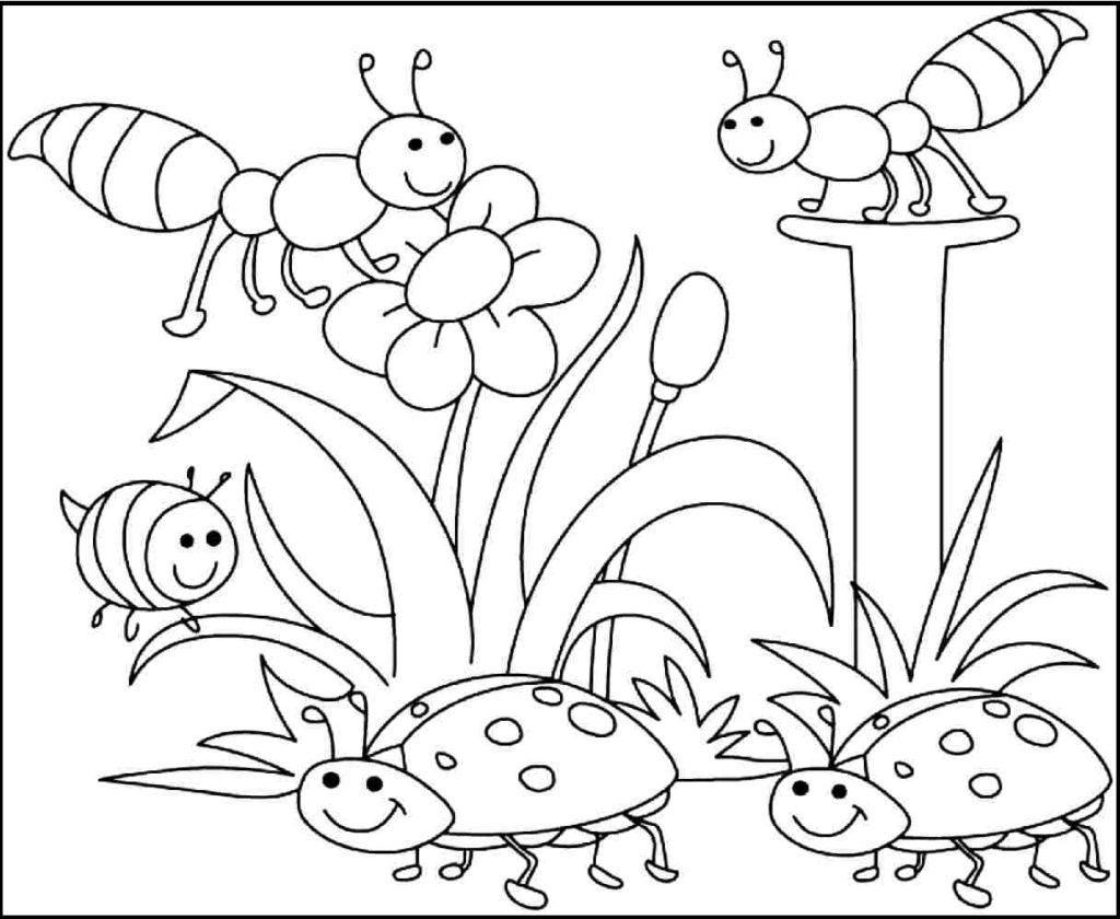 1024x840 Spring Flowers Coloring Pages Preschool To Fancy Print
