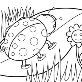 268x268 Spring Coloring Pages For Preschoolers Give The Best Coloring