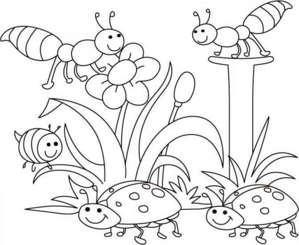 1024x837 Spring Coloring Pages Toddlers Az Coloring Pages Spring Coloring