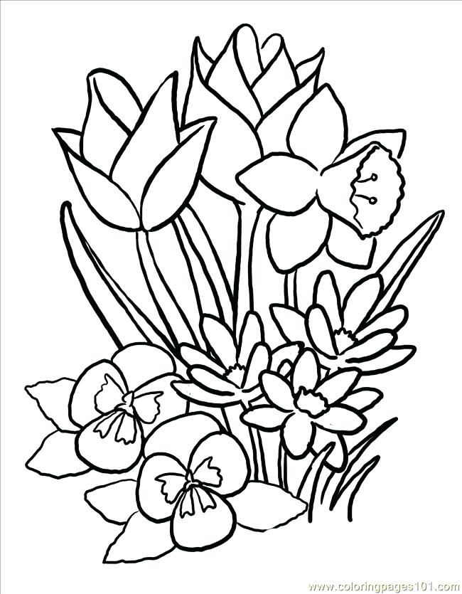 650x835 Spring Coloring Pages Printable Spring Butterflies With Flowers
