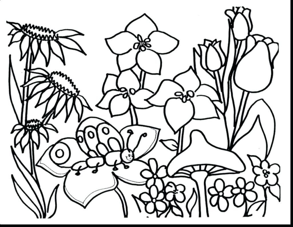 1024x792 Coloring Page Spring Coloring Pages For Adults Good Free