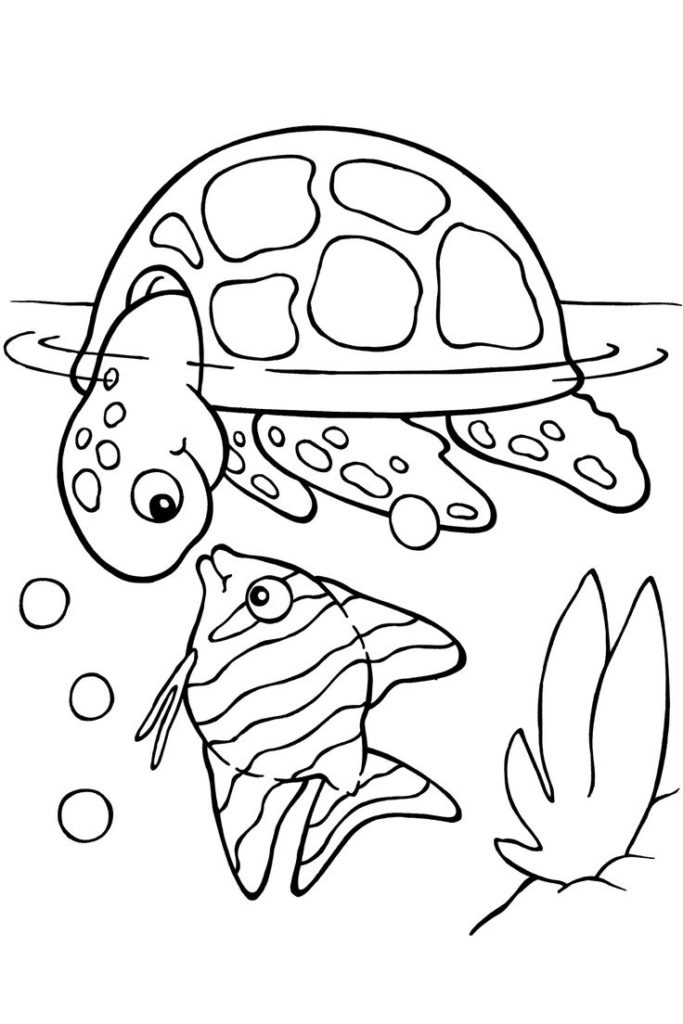 683x1024 Coloring Pages The Art Of Seeing Turtles Coloring Pages