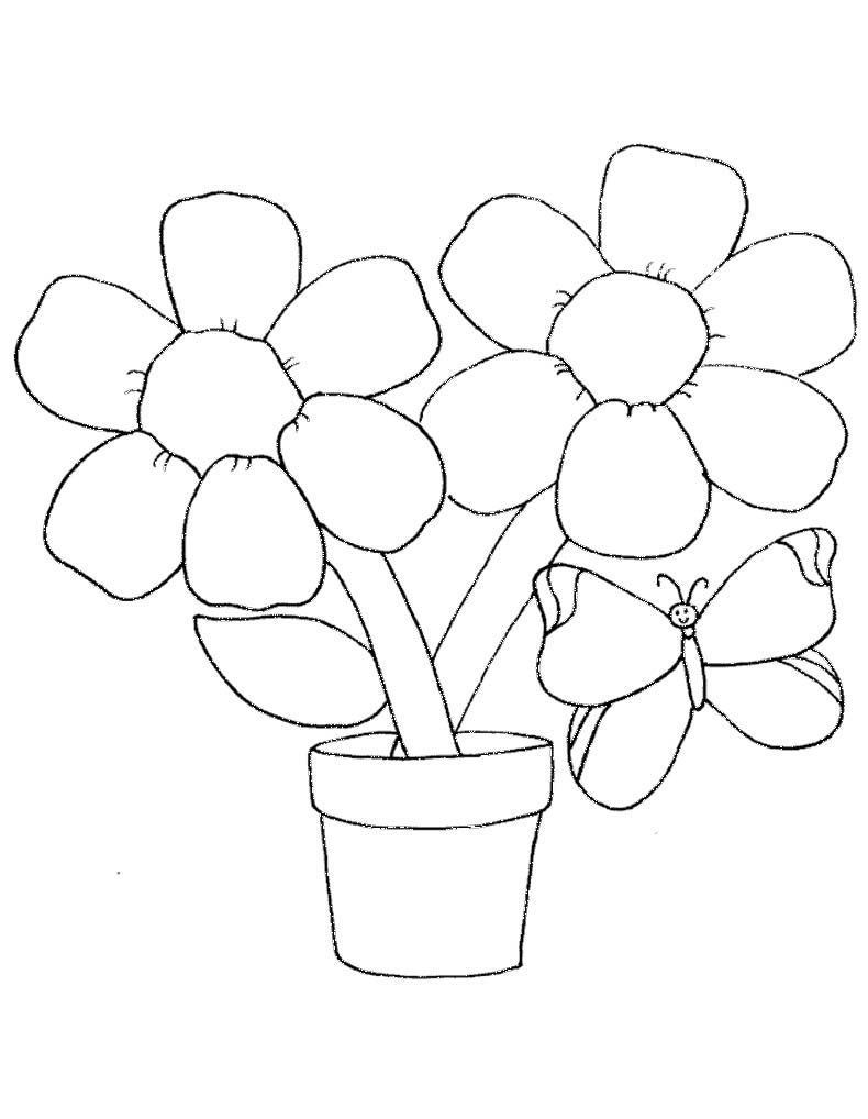 790x1018 Spring Flower Coloring Pages