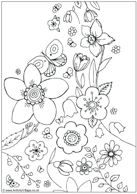 460x651 Spring Flower Coloring Pictures Spring Flowers Colouring Page