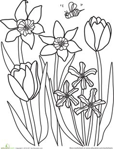 236x308 Flower Page Printable Coloring Sheets Spring Coloring Pages
