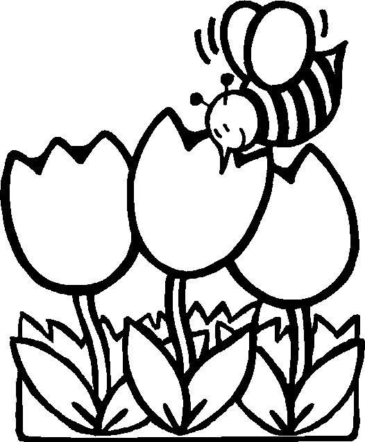 526x636 Spring Flower Coloring Pages Free Flower Coloring Pages For Kids