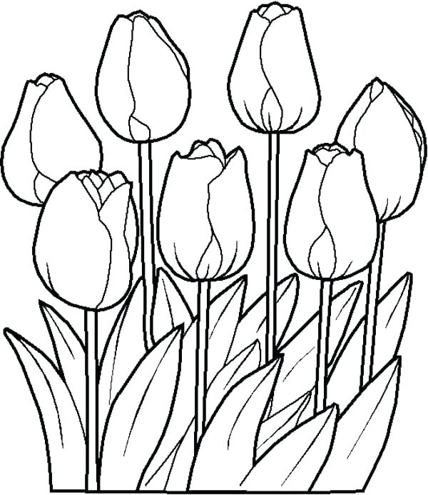 600x693 Cute Flower Coloring Pages Coloring Pages New Printable Spring