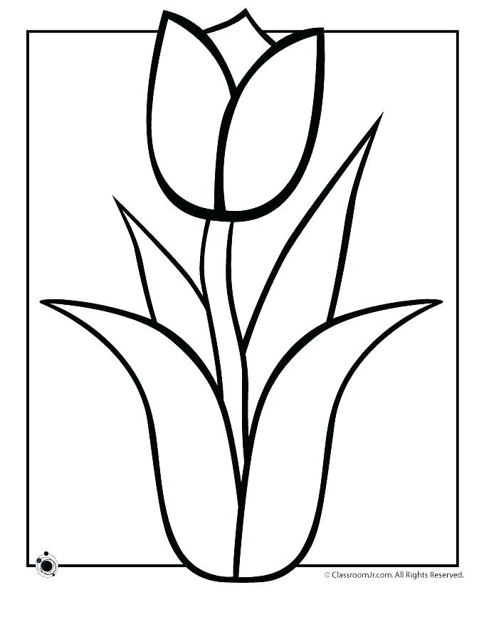 680x880 Flower Color Pages Spring Flower Coloring Page For Kids Flower
