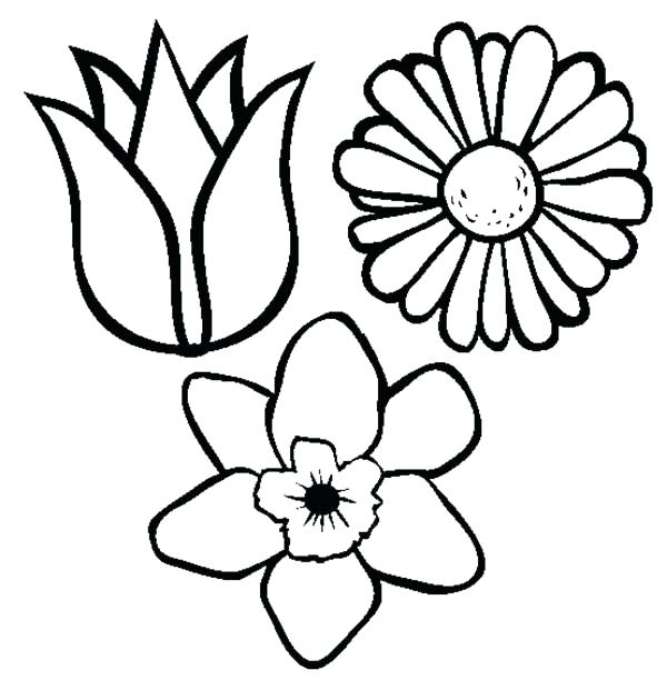 Spring Flowers Coloring Pages Printable At Getdrawings Com Free