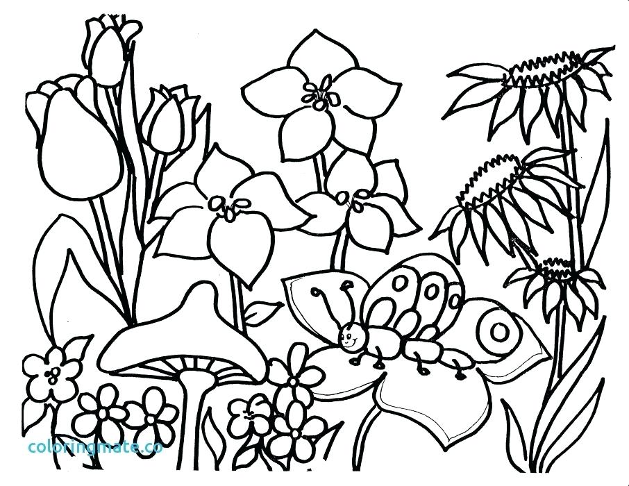 906x700 Free Spring Coloring Pages Spring Coloring Pictures Free Spring