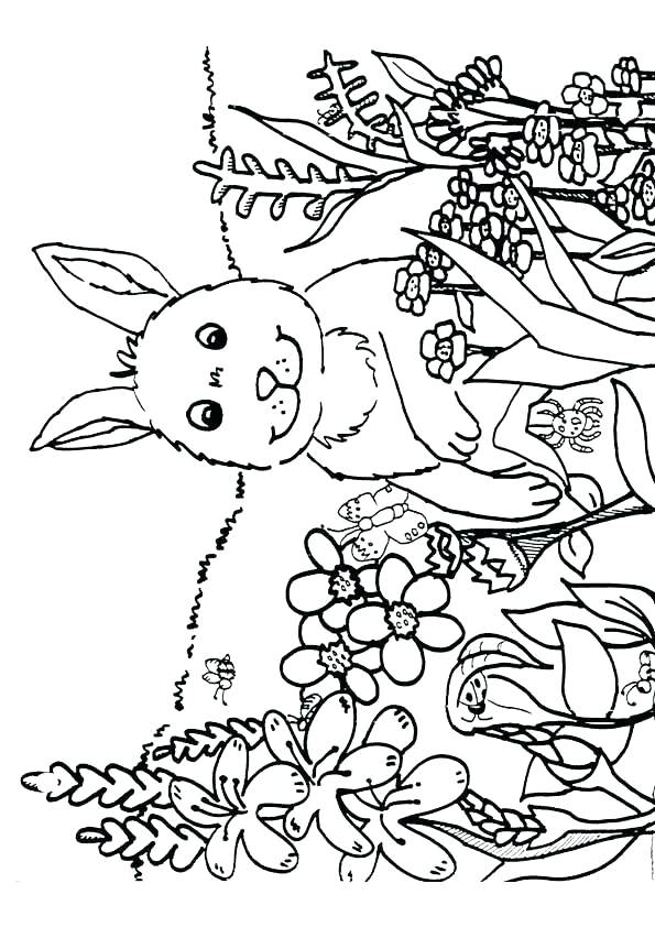 595x842 Coloring Pages Spring Nature Spring Printable Coloring Pages Easy