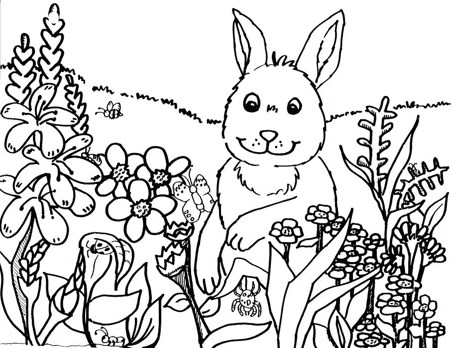 906x700 Spring Themed Coloring Pages Spring Themed Coloring Pages Fun