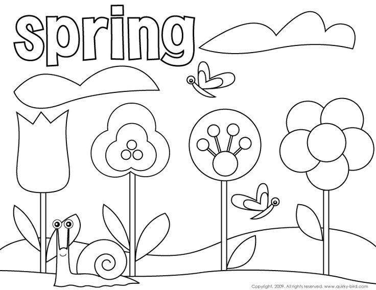 736x568 Springtime Coloring Pages For Preschoolers