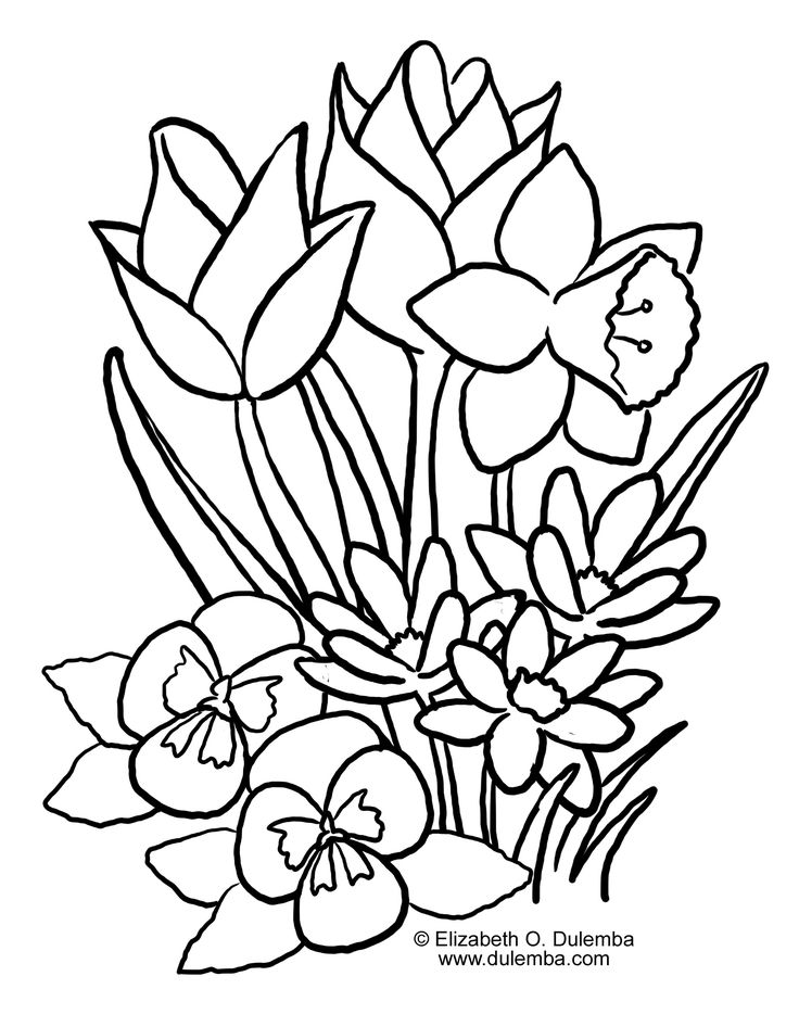 736x946 Spring Flower Coloring Pages Unique Spring Coloring Pages Ideas