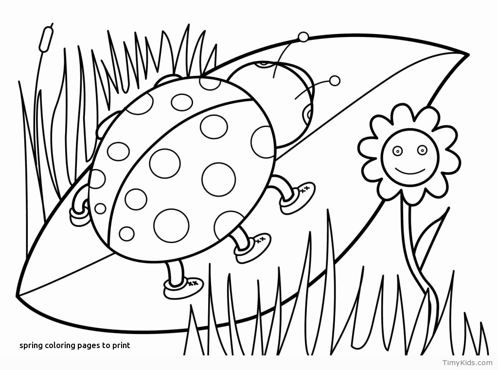 1024x760 Coloring Pages Of Spring Trees Pictures Pear Tree Coloring Pages