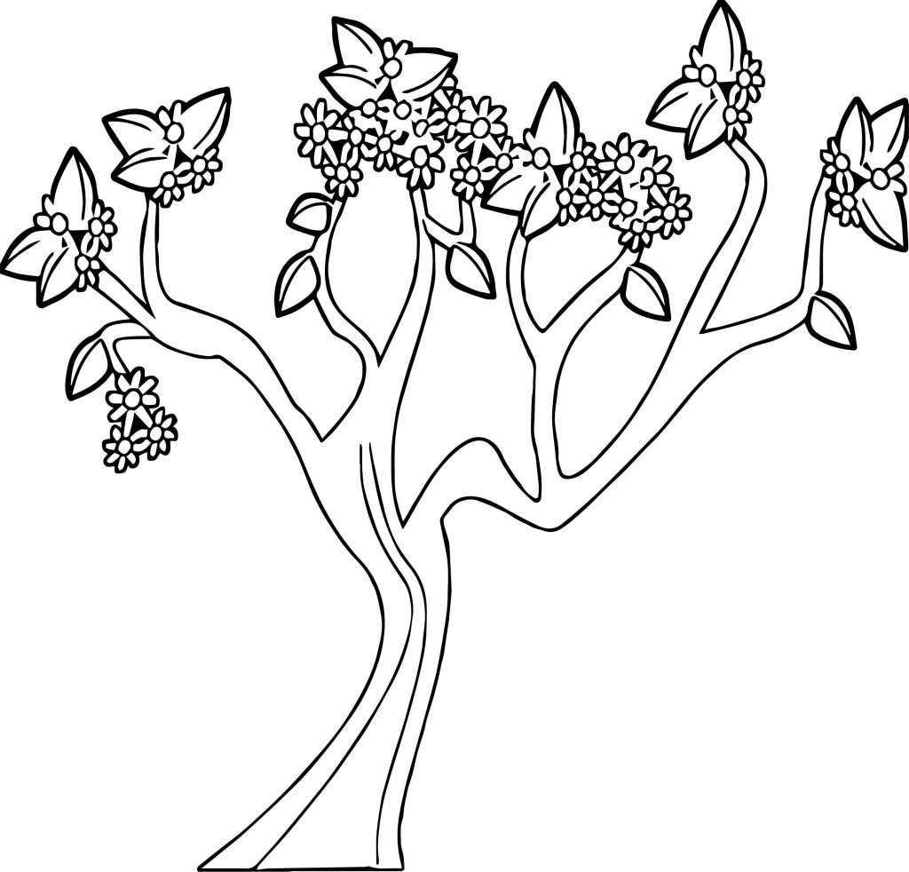 1024x982 Coloring Pages Tree Fu Tom New Coloring Pages Tree Fu Tom Fresh