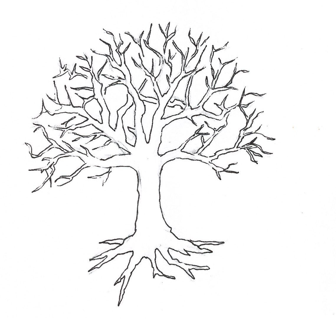 1139x1080 Nevada State Tree Coloring Page Free Printable Pages Kids