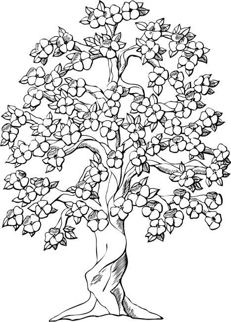 467x650 Coloring Pages Of Spring Trees Flowers Spring Tree