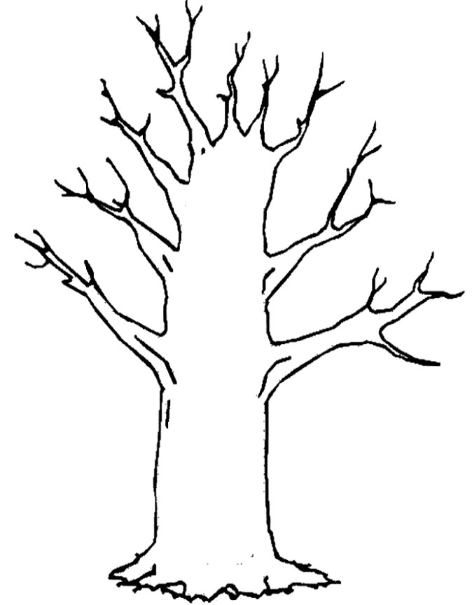 674x863 Bare Tree Coloring Page Clip Art Library