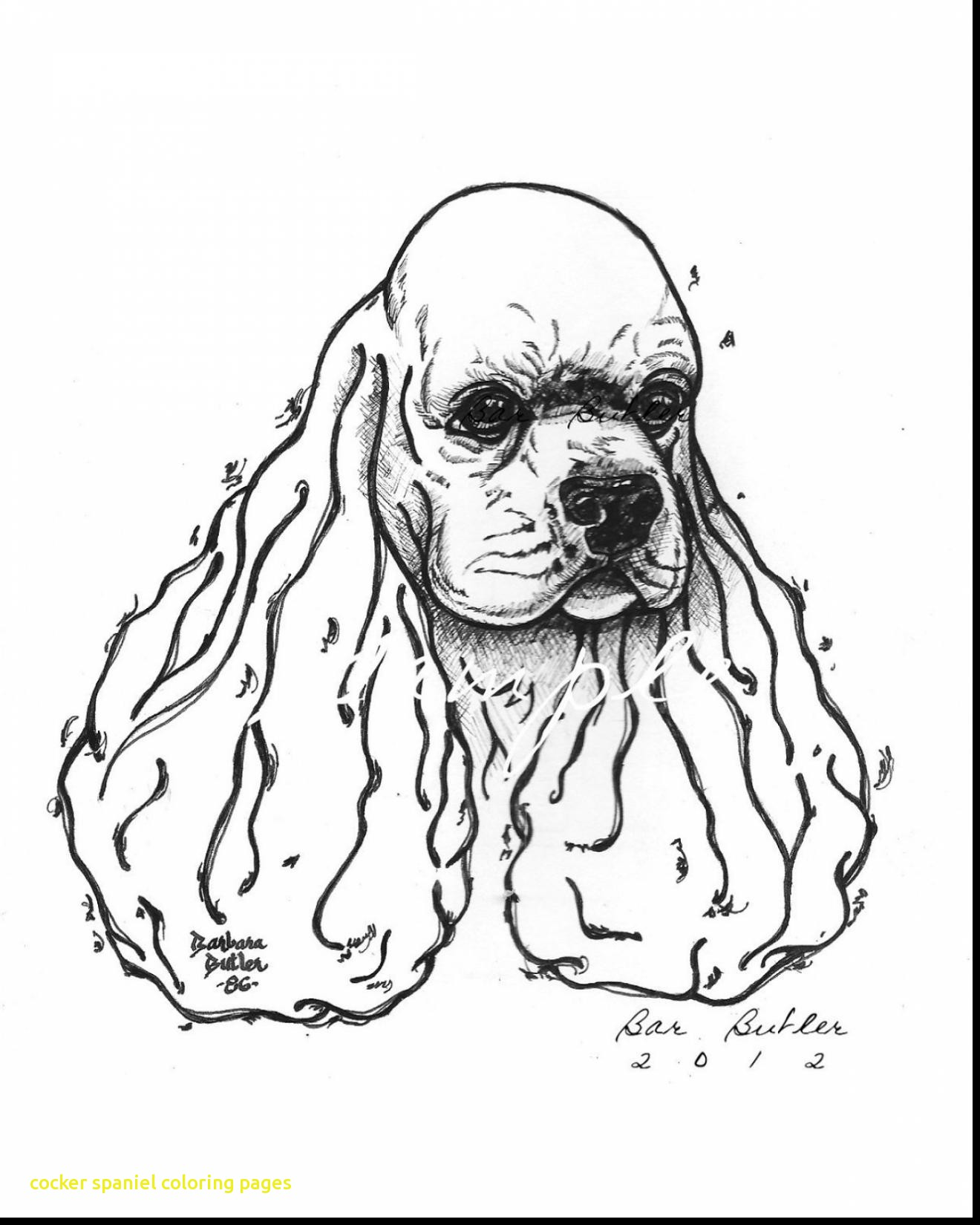 1320x1650 Cocker Spaniel Coloring Pages With Stunning Cocker Spaniel