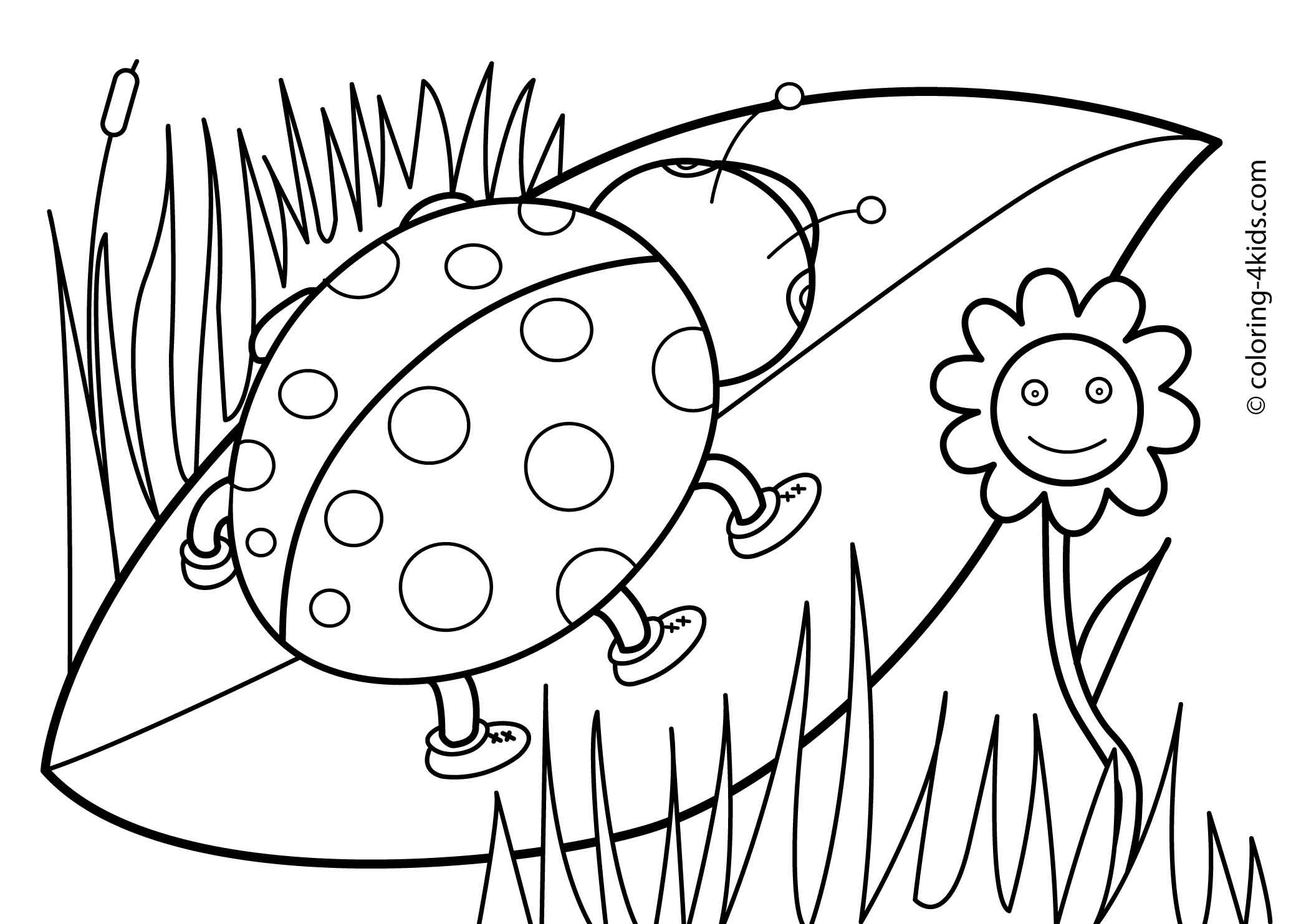 2079x1483 Printable Spring Coloring Pages