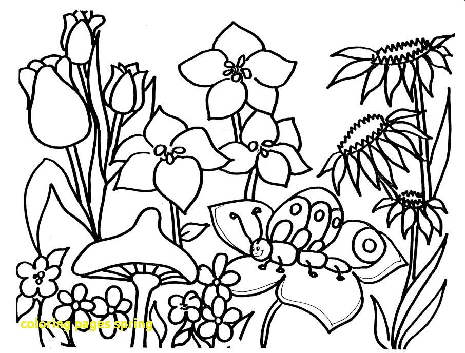 906x688 Coloring Pages Spring With Spring Coloring Pages Printable Open