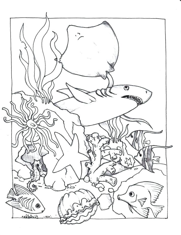 736x954 Spy Coloring Pages Totally Spies Coloring Pages I Spy Coloring