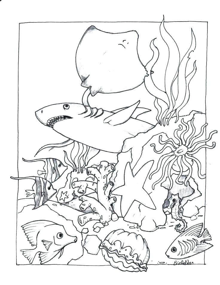 736x954 Coloring Pages Online Hard Glow Book Shark Page Free Printable