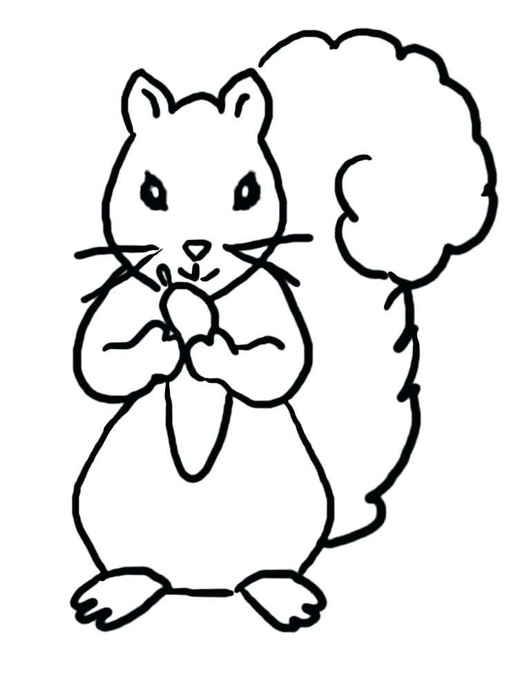 750x1000 Squirrel Coloring Page Bell Squirrel Coloring Pages For Preschool