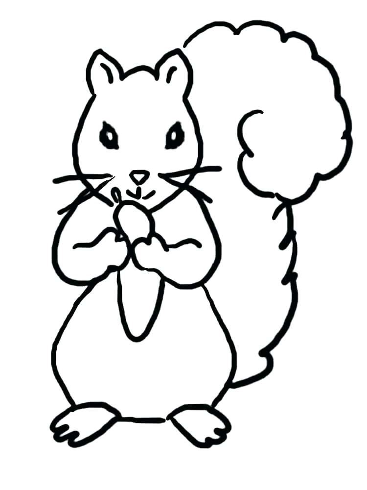 750x1000 Squirrel Coloring Pages Flying Squirrel Coloring Page Flying