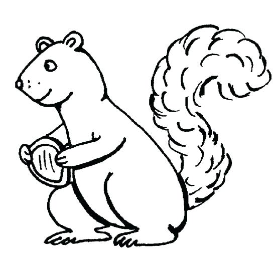 548x537 Squirrel Coloring Pages Squirrel Coloring Pages Coloring Pages
