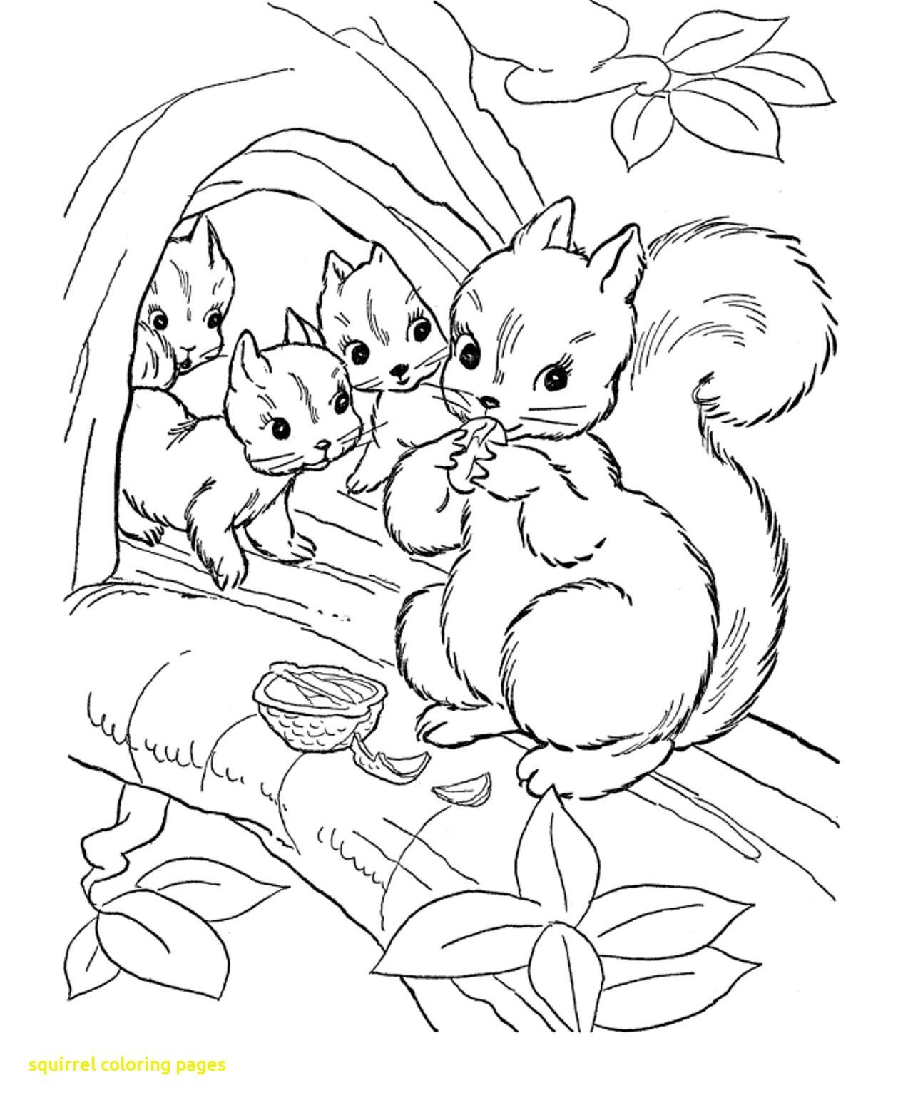 1266x1550 Squirrel Coloring Pages Squirrel Coloring Pages