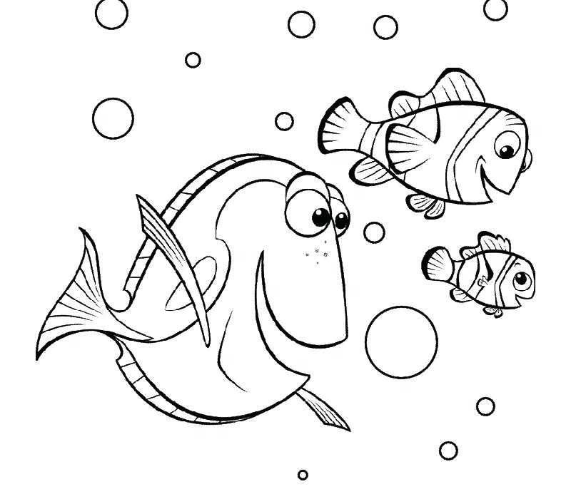 800x700 Nemo Coloring Page Finding Coloring Page Finding Nemo Squirt