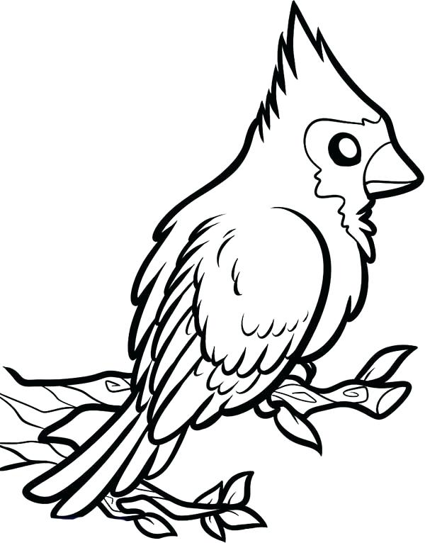 St Louis Cardinals Coloring Pages