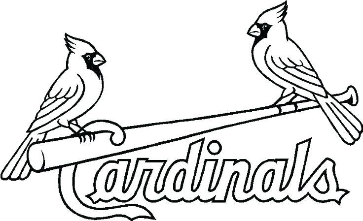 736x449 St Louis Cardinals Coloring Pages Cardinal Coloring Pages Cardinal
