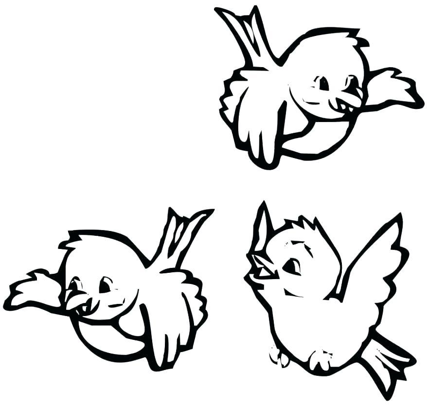 878x837 St Louis Coloring Pages St Louis Cardinals Coloring Pages Fredbird