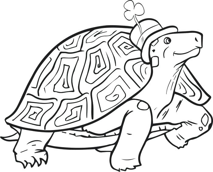 St Patty Coloring Pages at GetDrawings.com   Free for personal use ...