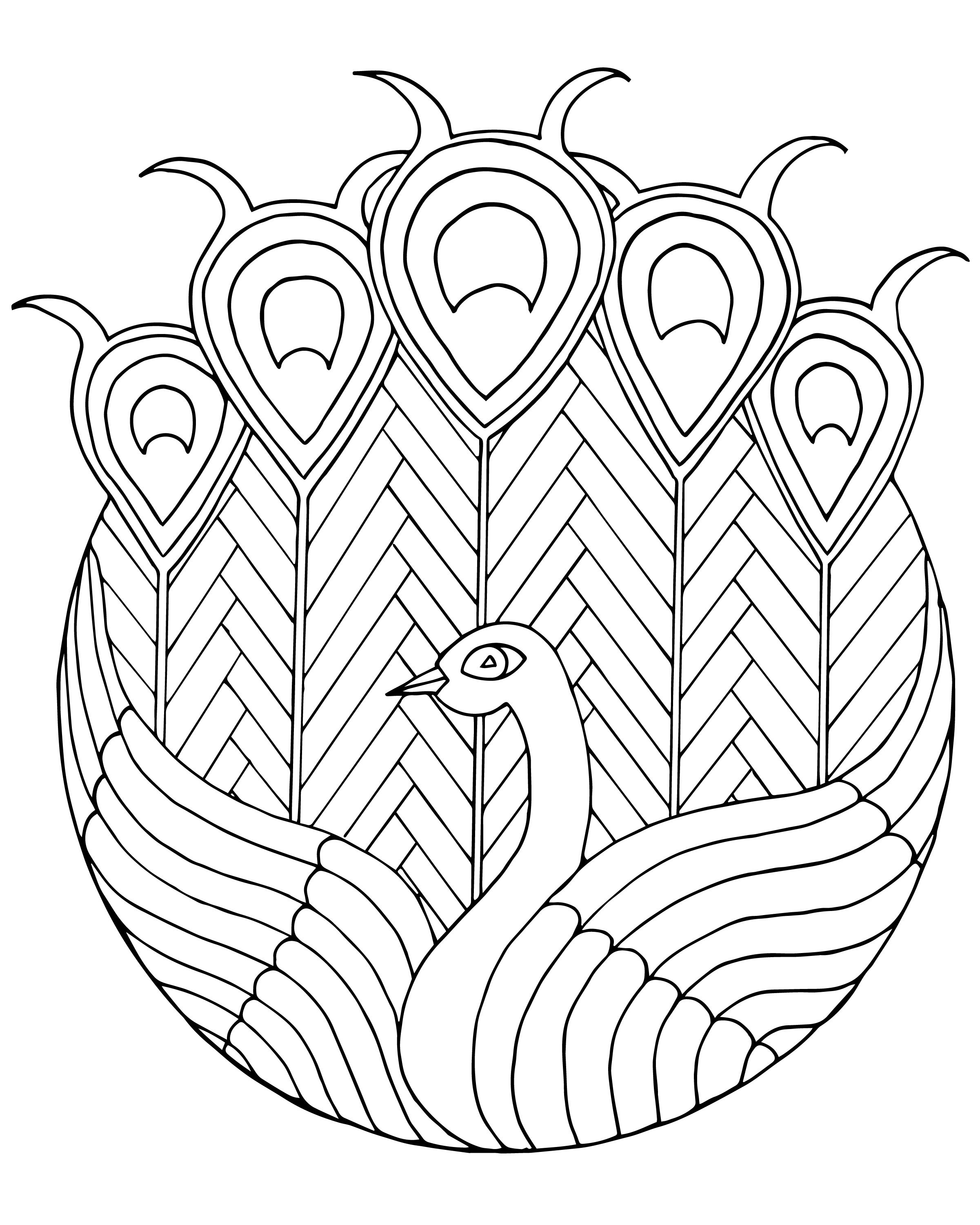 2401x3000 Peacock Stained Glass Adult Coloring Page Coloring Pages