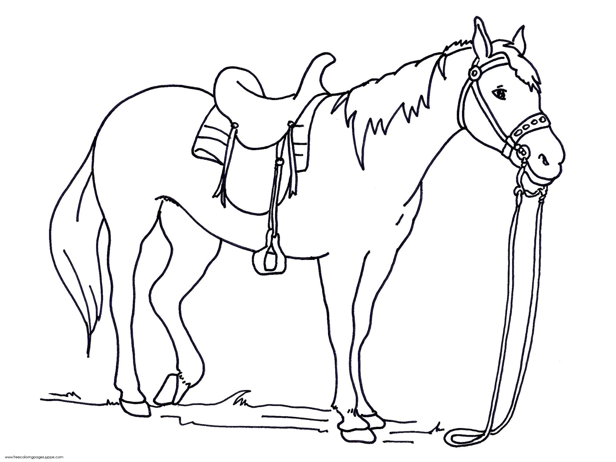 2000x1500 Excellent Colouring In Horses Horse Coloring Pages Futpal Com