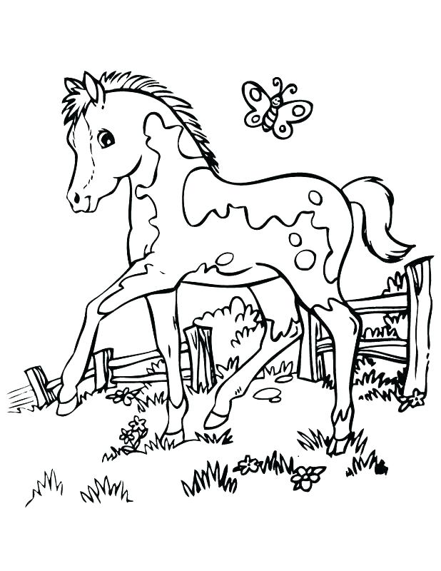 618x800 A Coloring Page Of A Horse Coloring Pages Animal Coloring Pages